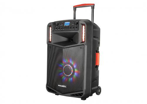 LOA + 2 MICRO USB/SD/FM/NFC/BT LED ADS (CAD-T12D)